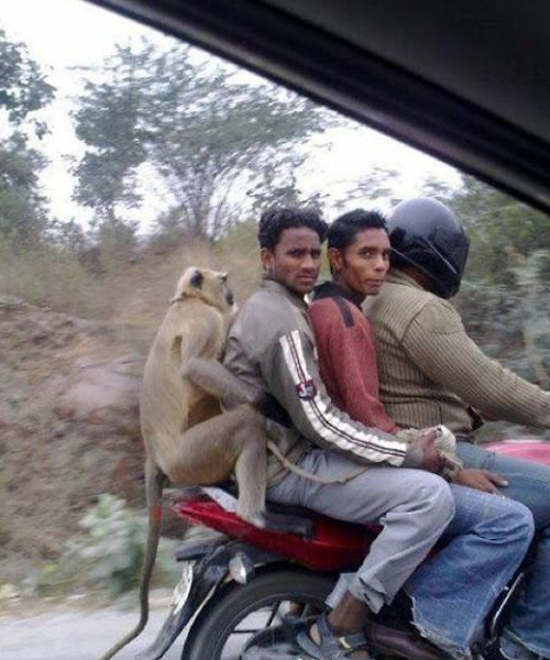 5 - 25 Quirky Things That Happen Only In India.!!