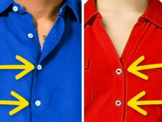 cover1 - Here's Why Buttons Of Women's & Men's Shirts Are On Opposite Sides.!!