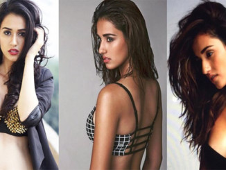 cover - These 15 Pics of 'MS Dhoni' Fame Disha Patani Will Blow Your Mind.!!